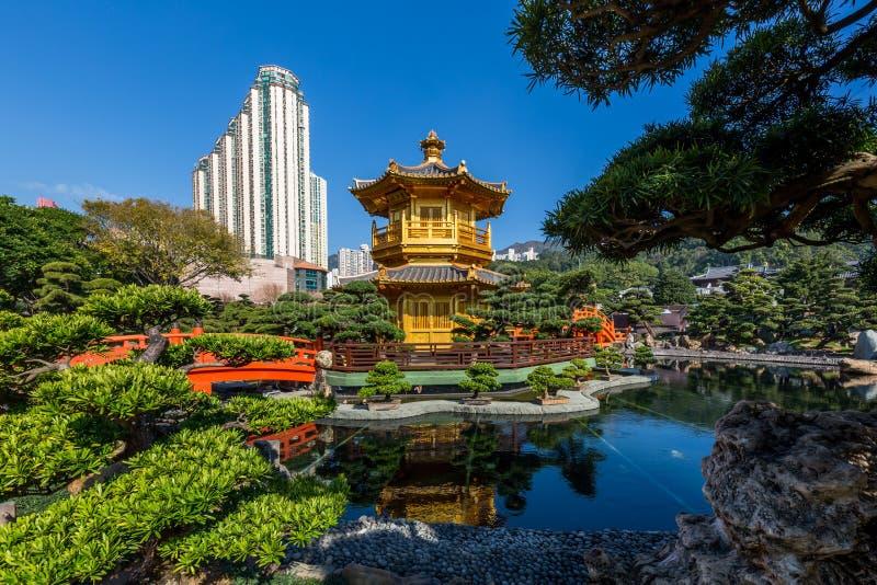南Lian庭院,中国古典庭院,完美金黄亭子在南Lian庭院,香港里 库存图片