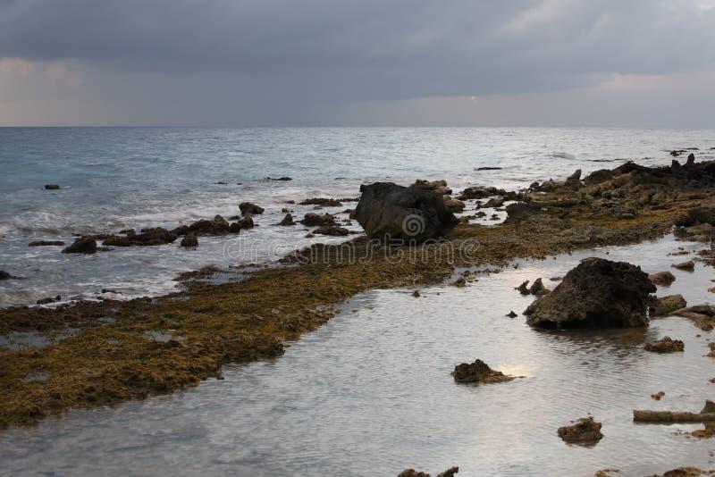博内尔岛珊瑚岩石shorline 库存照片