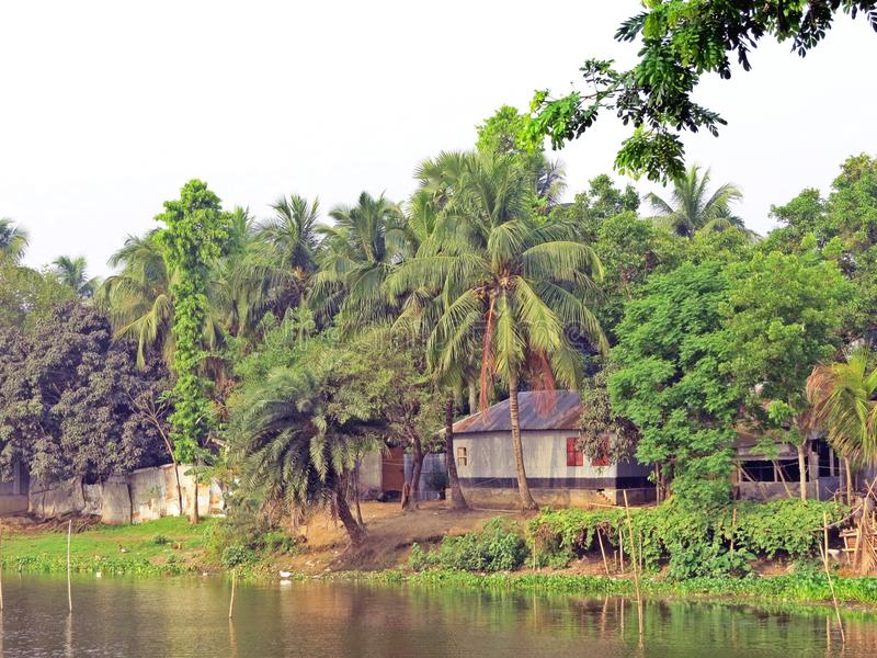 博多河在Kushtia,孟加拉国 库存图片