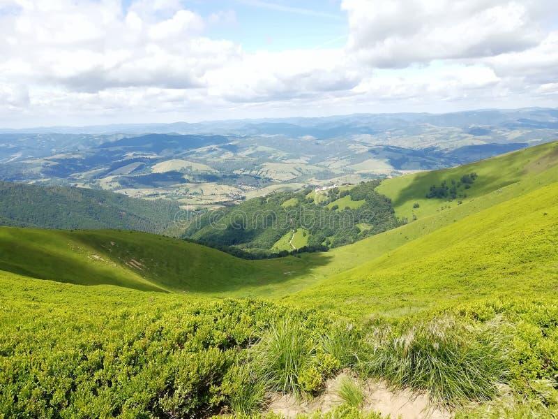 博尔扎瓦 乌尔卡因 喀尔巴阡 山脉 布什 视图 自然 库存图片