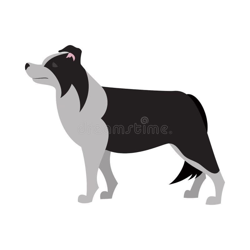 博德牧羊犬设计 库存例证