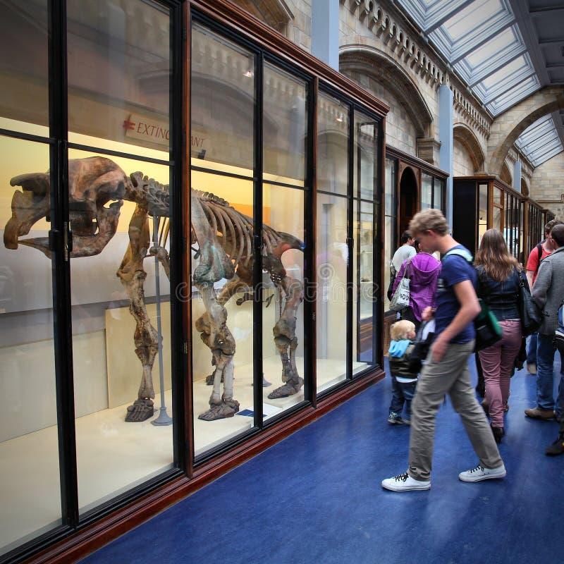 博物馆访客在伦敦 库存照片