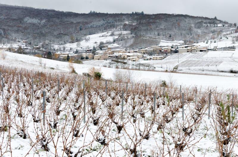 博若莱红葡萄酒葡萄园和村庄在雪下 库存照片