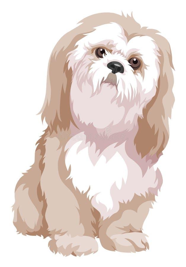 博洛涅塞狗传染媒介  库存图片