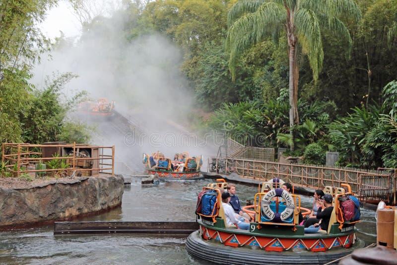 卡利市河急流,华特・迪士尼世界 免版税图库摄影