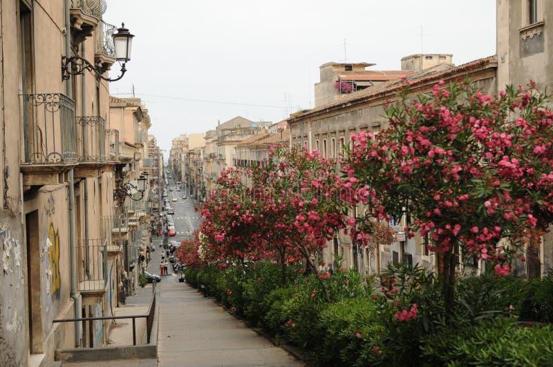 卡塔尼亚场面街道 免版税库存照片