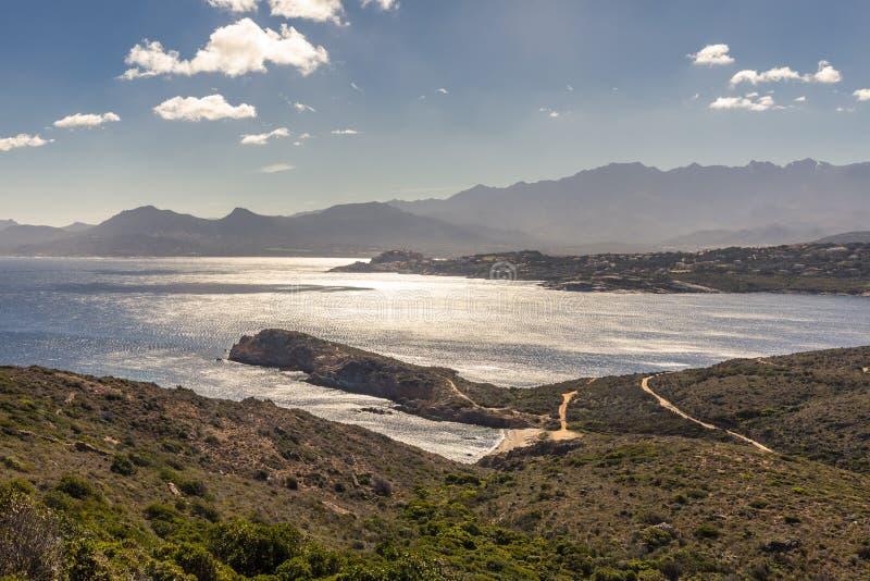 卡尔维城堡和山看法从Revellata在可西嘉岛 免版税库存照片