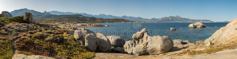 卡尔维海湾Pnoramic视图从蓬塔Spanu的在可西嘉岛 图库摄影