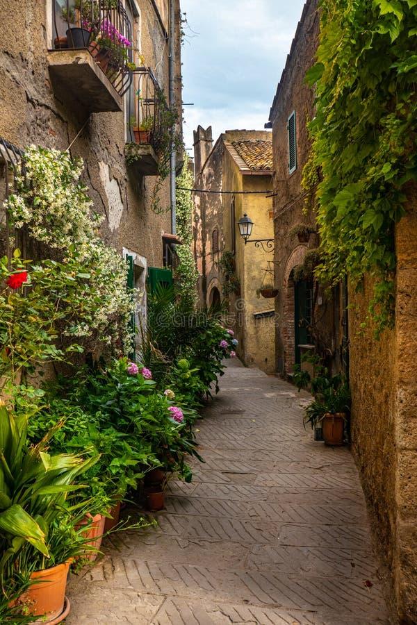 卡帕尔比奥,托斯卡纳,意大利小的中世纪镇街道,有大厦和花的 库存图片