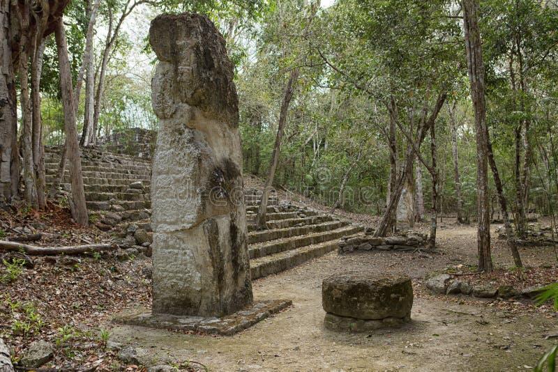 卡拉克穆尔玛雅人废墟在墨西哥 库存图片