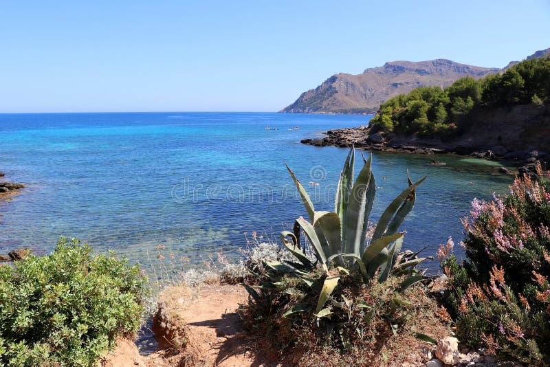 卡拉市末多-阿尔塔马略卡巴利阿里群岛西班牙 免版税库存图片