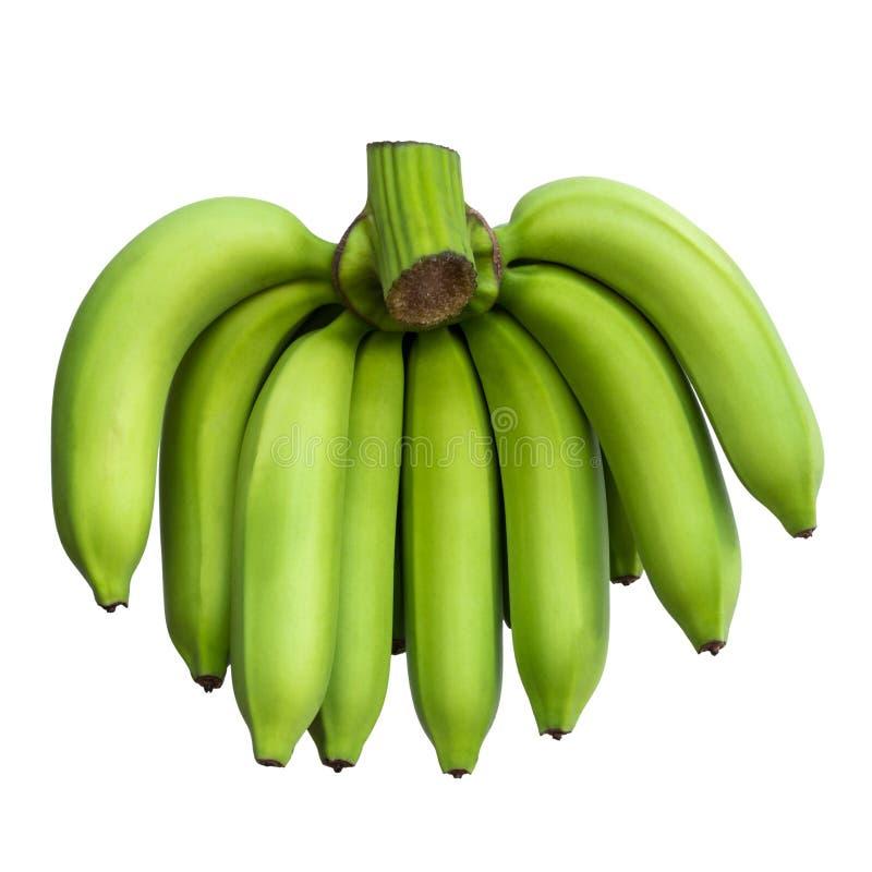 卡文迪许香蕉绿色孤立 图库摄影