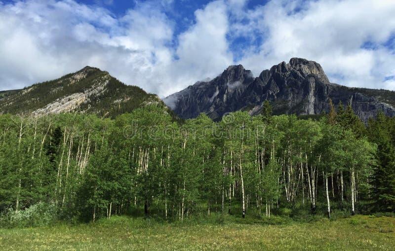 卡斯尔山,班夫国家公园,亚伯大,加拿大 免版税库存图片