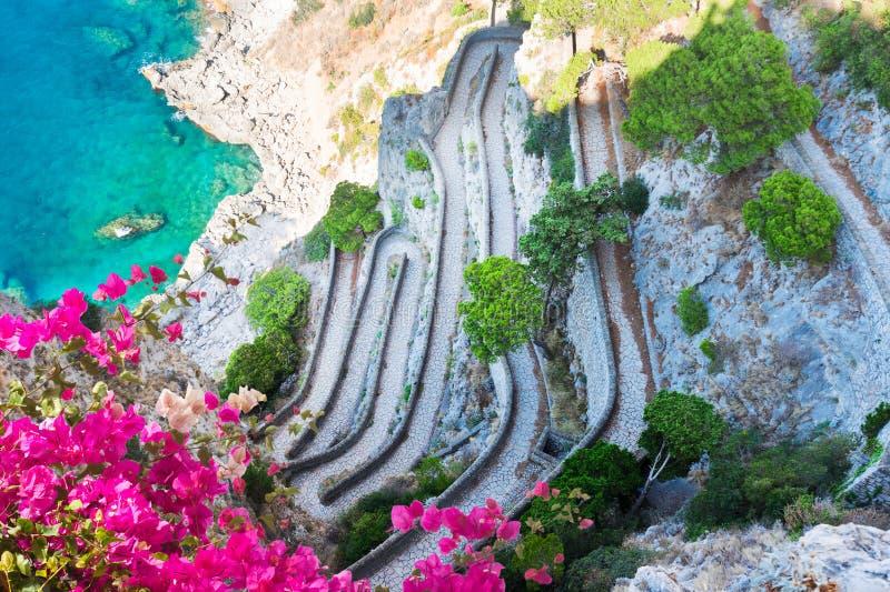 卡普里海岛,意大利 库存图片