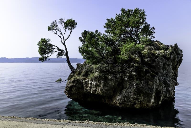 卡梅尼火山Brela -小著名海岛在Brela,马卡尔斯卡里维埃拉,达尔马提亚,克罗地亚 免版税库存图片