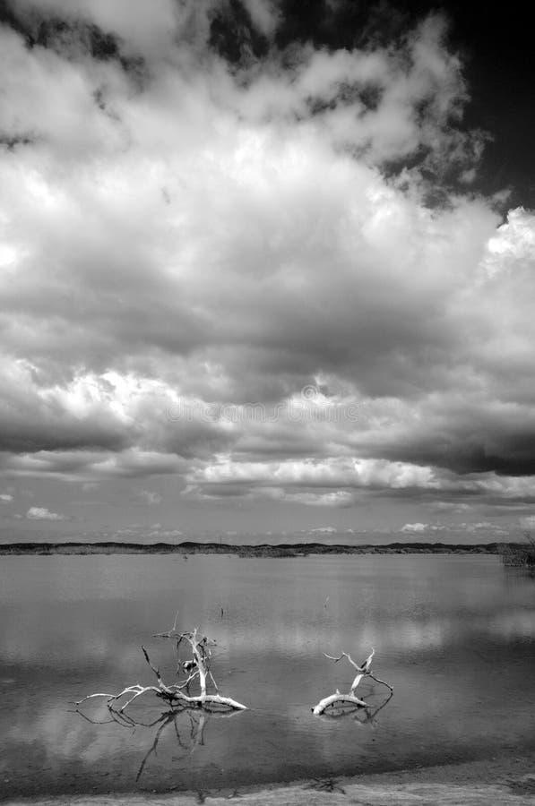 卡沃罗霍波多黎各盐湖 免版税库存图片