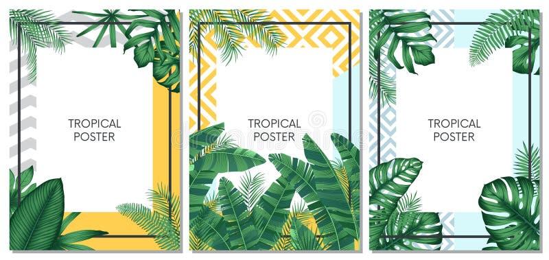 卡片、海报或者飞行物的夏天热带传染媒介布景与异乎寻常的棕榈叶 向量例证