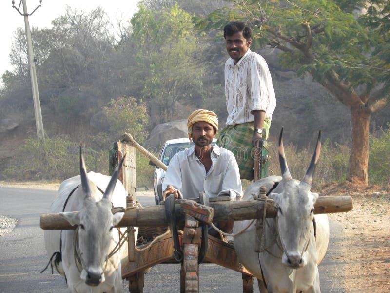 卡纳卡普拉,卡纳塔克邦,印度- 2010乘坐牛车的1月31日A传统村庄人 库存图片