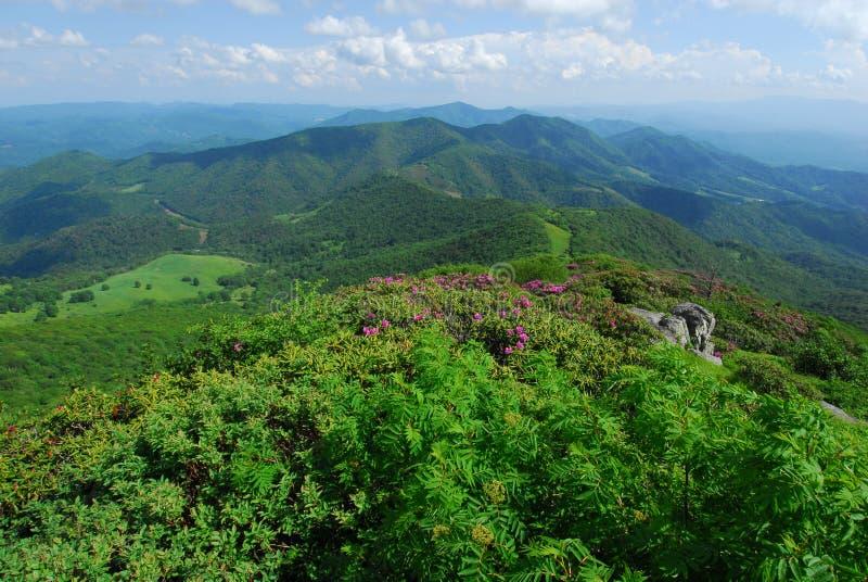 卡罗来纳州风景北部横向的山 免版税库存图片