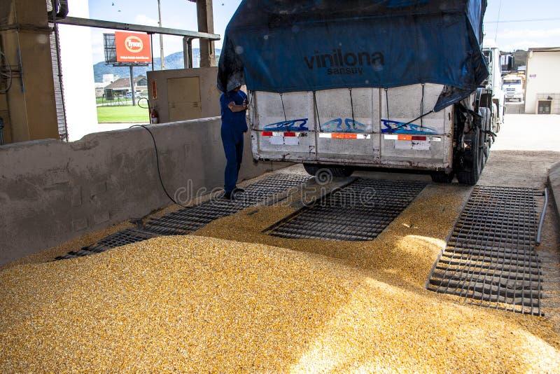 卡车加载玉米 库存照片