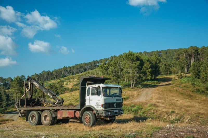卡车在土路旁边的日志装载者在有树的地形 免版税库存图片