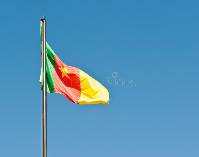 卡麦隆的国旗 免版税库存图片