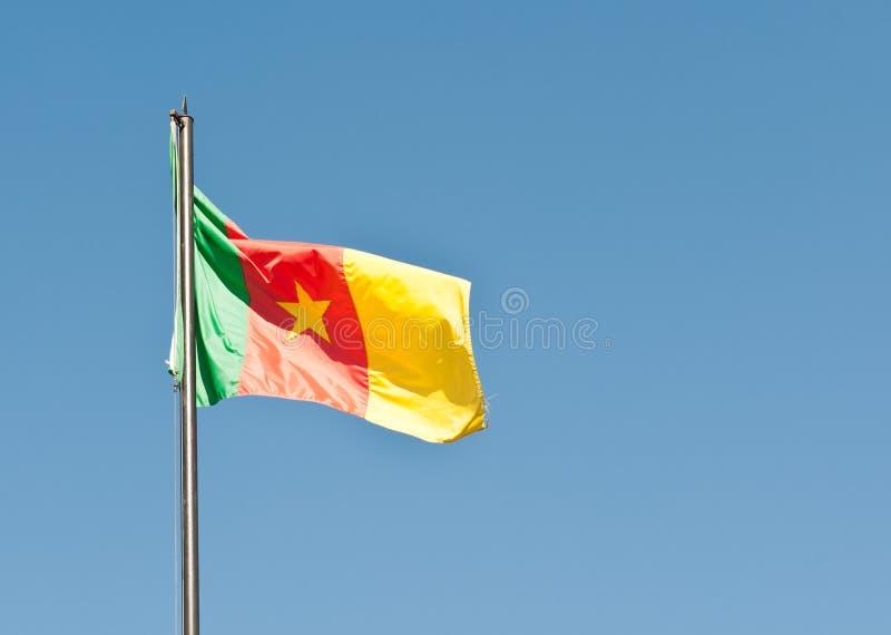 卡麦隆的国旗 库存图片