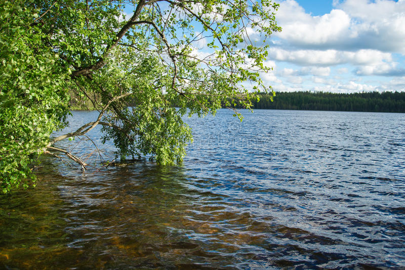 卡累利阿人的湖 免版税库存照片