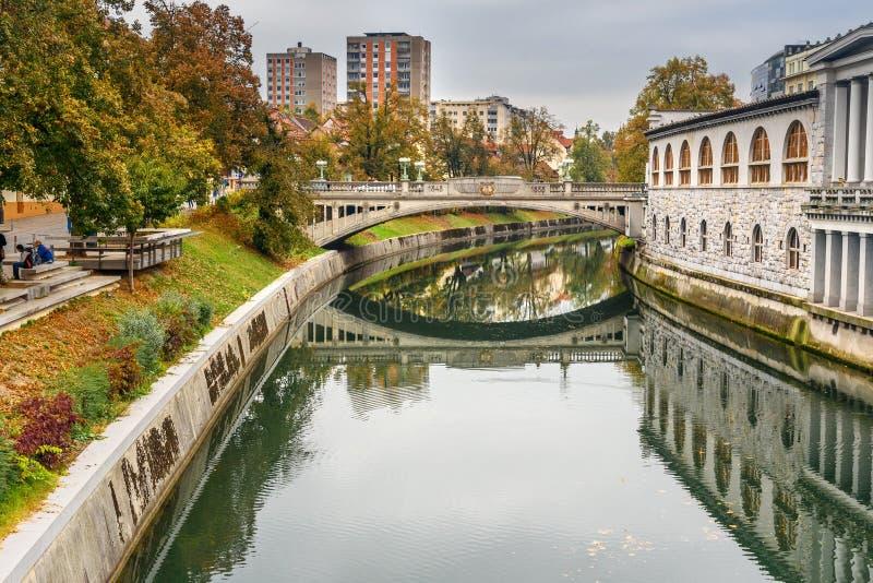 卢布尔雅尼察河河和龙桥梁看法或者Zmajski多数卢布尔雅那 r 免版税库存照片