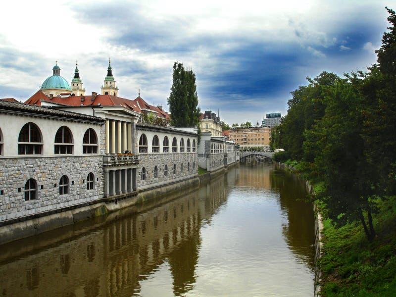 卢布尔雅那河 库存照片