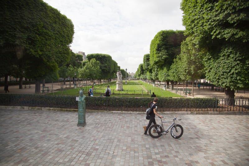 卢森堡在巴黎,法国从事园艺(卢森堡公园) 免版税库存照片