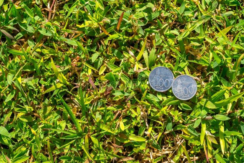 卢比在绿草的硬币金钱 库存照片