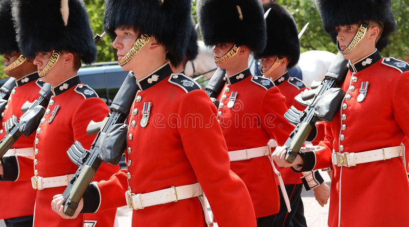 卫兵的变动,伦敦 库存照片