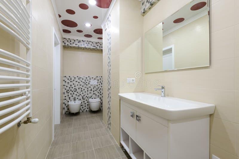 卫生间内部、衣物柜有镜子的,洗手间和净身盆 图库摄影