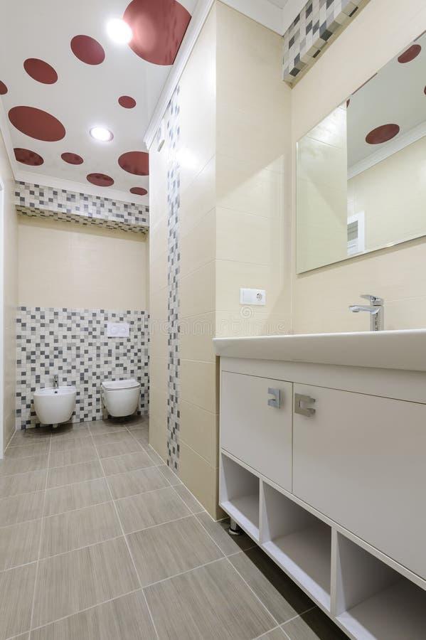 卫生间内部、衣物柜有镜子的,洗手间和净身盆 免版税库存图片