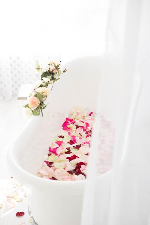 卫生间在用玫瑰的花和瓣装饰的一间轻的屋子 库存照片