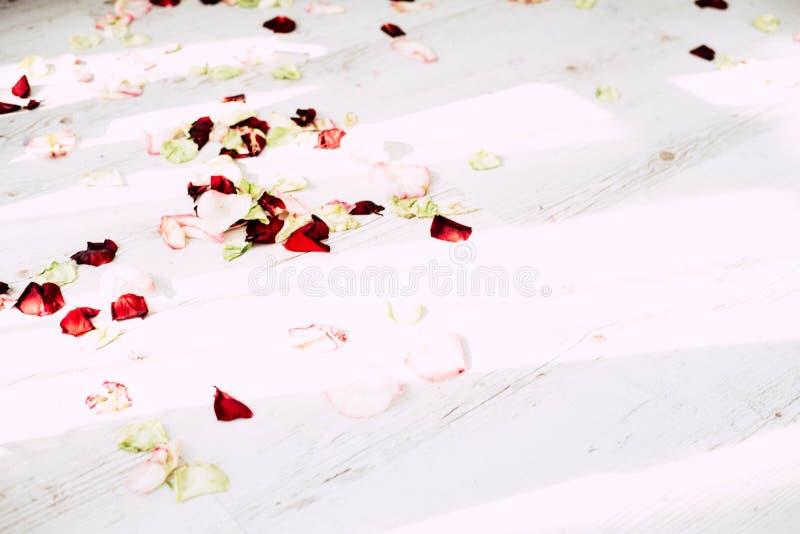 卫生间在用玫瑰的花和瓣装饰的一间轻的屋子 库存图片