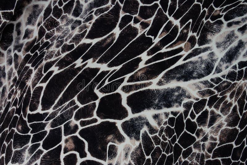 印刷品织品纹理镶边了斑马和豹子 库存照片