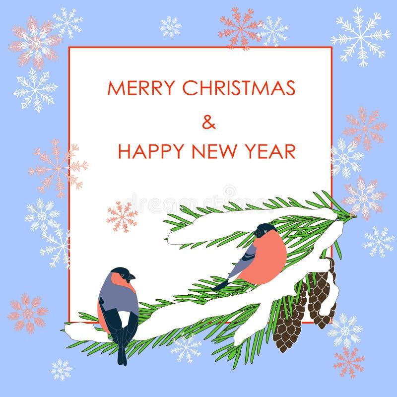 印刷术横幅红色圣诞快乐和新年快乐,在杉树的bulfinch在白色 库存例证