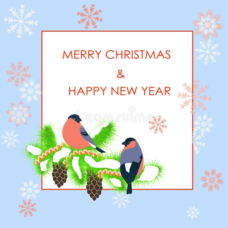 印刷术横幅红色圣诞快乐和新年快乐,在杉树的bulfinch在白色 向量例证
