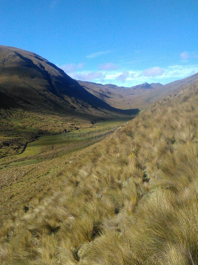 印加人足迹在厄瓜多尔 库存图片