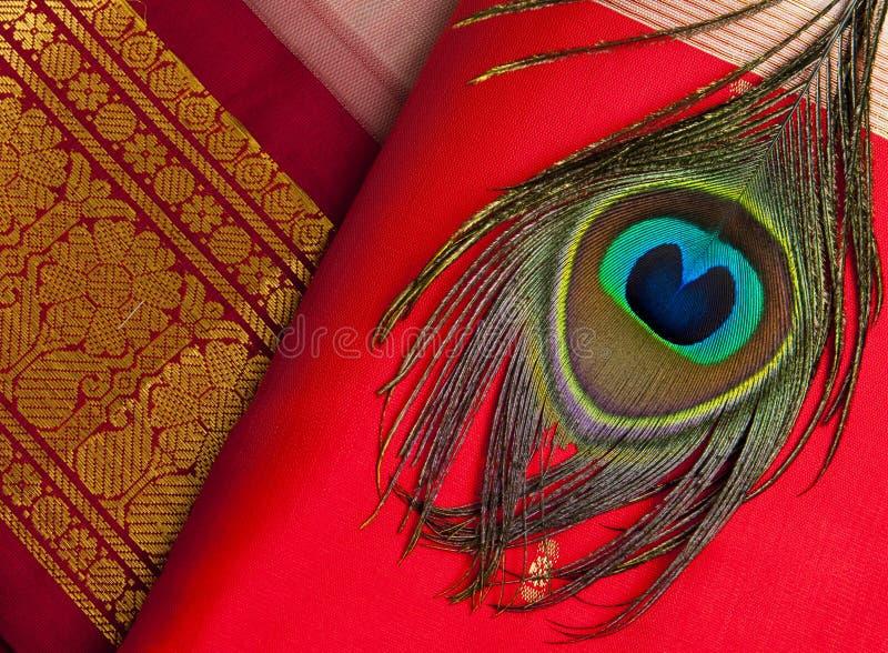 印地安丝绸saries 免版税图库摄影