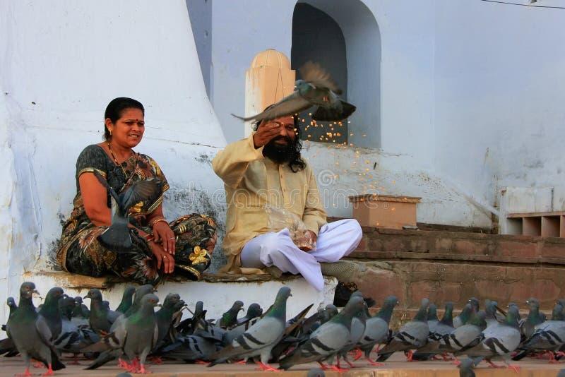 印地安男人和妇女哺养的鸽子临近圣洁湖,普斯赫卡尔,  免版税图库摄影