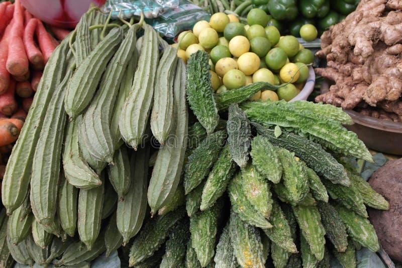 印地安黄瓜 免版税库存照片
