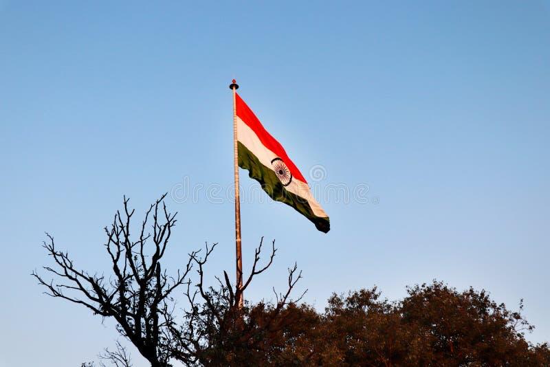印度国民沙文主义情绪在风 免版税库存照片