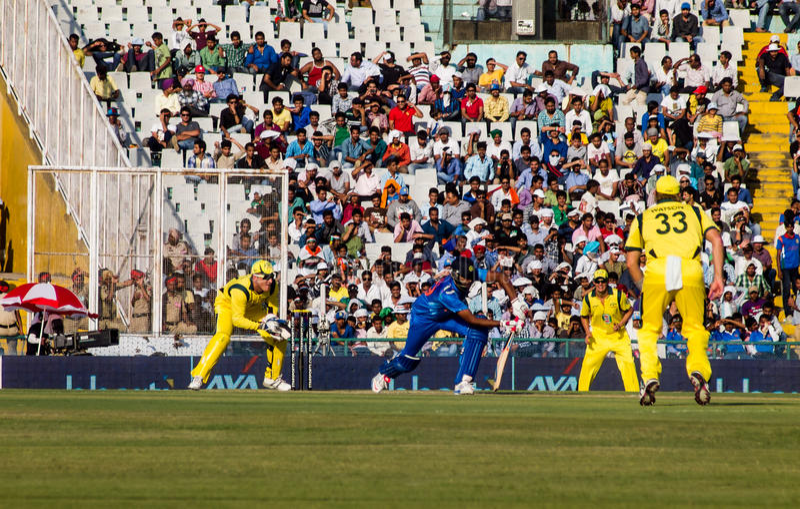 印度对澳大利亚蟋蟀 免版税库存照片