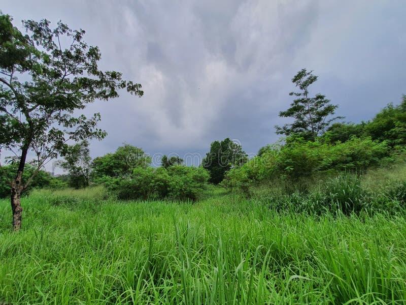 印度尼西亚南部城市路丹格朗西爪哇的美丽景色 免版税图库摄影