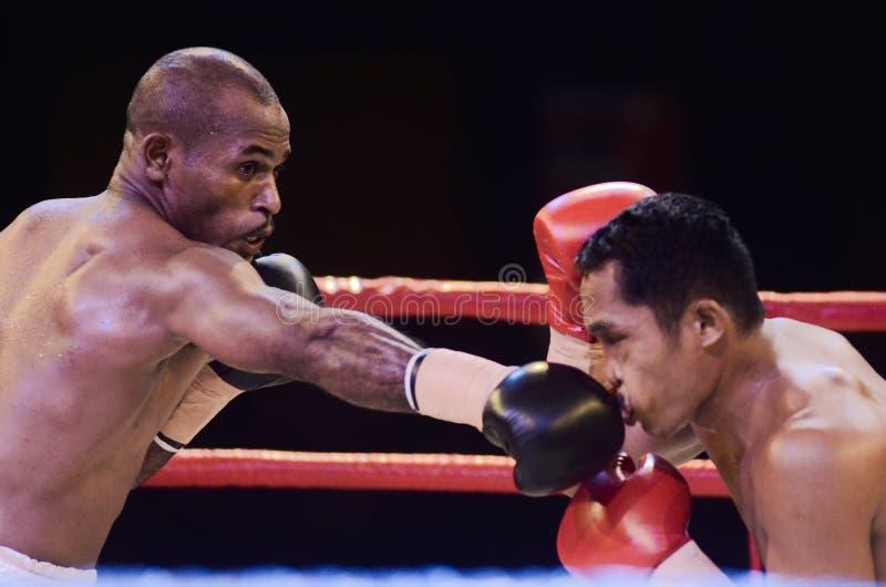 印度尼西亚拳击世界 图库摄影
