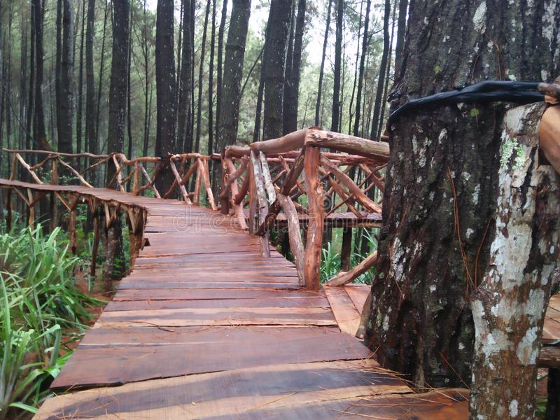 印度尼西亚政府修筑的旅游桥梁 库存照片