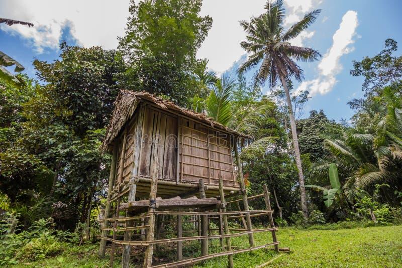 印度尼西亚的本地人的传统房子在村庄 库存图片